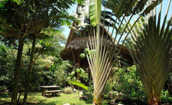 Lodges with perfect Eco Rating Score-Ojo del Mar in the Osa Peninsula, Costa Rica