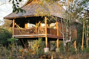 Kingfisher Ecolodge-Laos