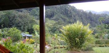 3 Rivers Eco Lodge view from Rose Cottage