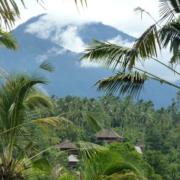 Bali Eco Stay Indonesia