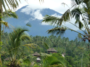 Bali Eco Stay-Indonesia