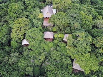 Jungle lodging at Buena Vista Surf Club- Nicaragua