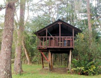 Standard Treehouse at Finca Ixobel Hotel Ecologico