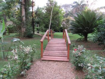 Macaw Bank Jungle Lodge bridge in the garden