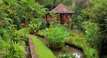 Lodges with perfect Eco Rating Score-Bali Eco Stay in Bali, Indonesia