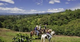 Finca Rosa Blanca Coffee Plantation Resort-Costa Rica