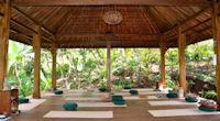 Yoga in nature in Bali, Indonesia