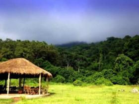 Udzungwa Forest Camp-Tanzania