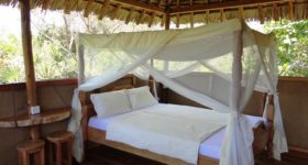 Tembo Kijani EcoLodge – beach and safari off the beaten track