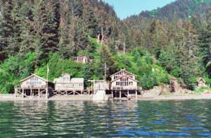 Sadie Cove Wilderness Lodge