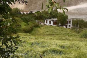 Shyok River Lodge-India