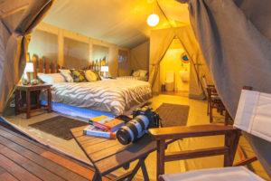 Wildebeest Eco Camp-Kenya
