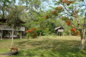 Finca Ixobel Hotel Ecologico-Guatemala