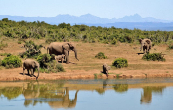 Africa Eco-Tourism