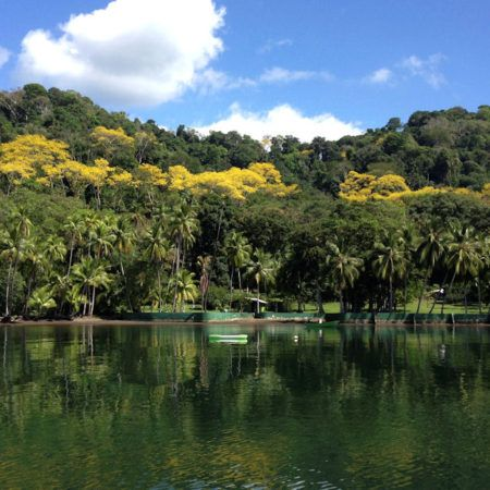 Saladero Eco Lodge-Costa Rica
