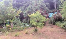 3 Rivers eco Lodge – Dominica