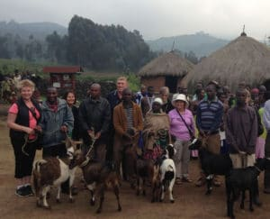 African Jungle Adventures-Rwanda