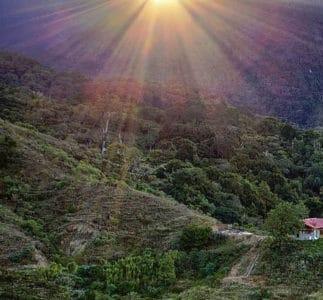 Panama-Mount Totumas Cloud Forest Resort