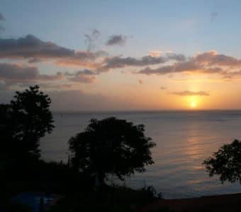 Dominica-The Tamarind Tree Hotel