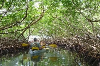 Honduras-Upachaya Eco-Lodge and Wellness Resort