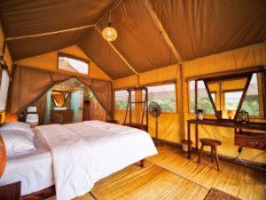 CTC_Tent