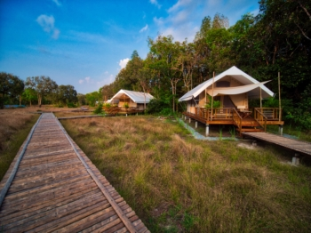 Cardamom Tented Camp tents