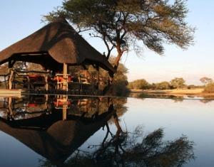 Okonjima Africat-Namibia