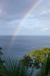 Sustainability in Dominica at the Tamarind Tree Hotel