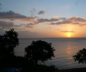 Dominica-The Tamarind Tree Hotel