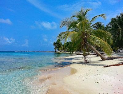 Panama Eco Lodges-white sandy beach